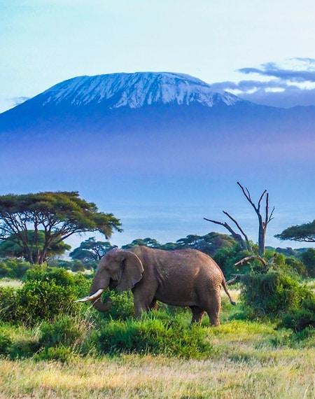 travel visa kilimanjaro
