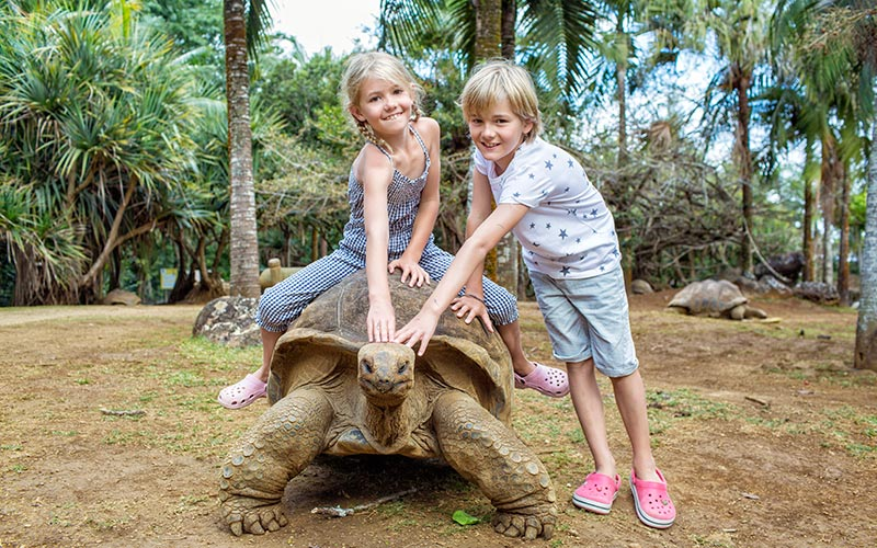 abi campbell children riding giant tortoise