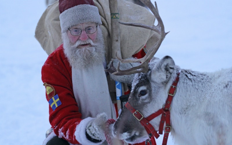 Meet the Reindeer this December