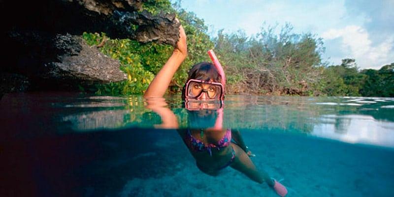 snorkelling-in-mangroves-ephelia-seychelles