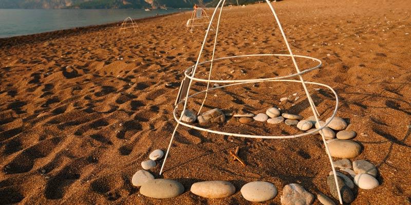 turtle-conservation-eggs-on-beach-turkey