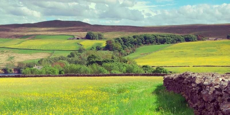 county-durham-landscape