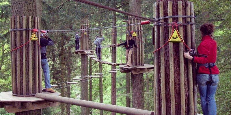 gizedale-forest-go-ape-lake-district