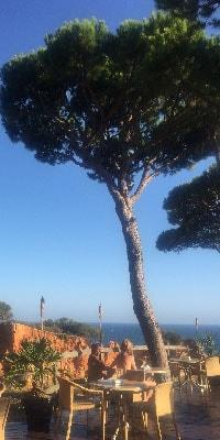 portgual-pine-cliffs-resorts-overlooking-the-sea