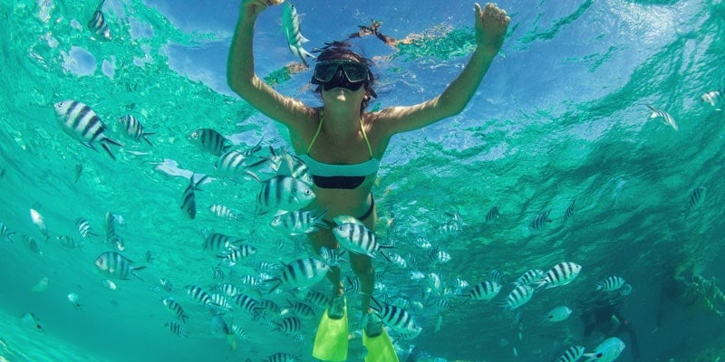 child-snorkelling-in-sea-with-tropical-fish-in-caribbean-or-indian-ocean