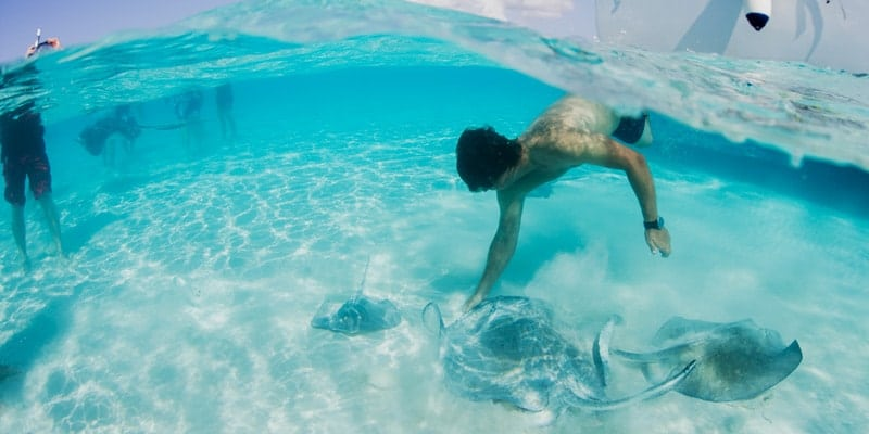 swimming-with-sting-rays-bahamas