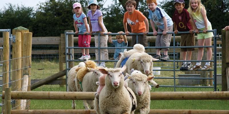 odds-farm-park-high-wycombe UK