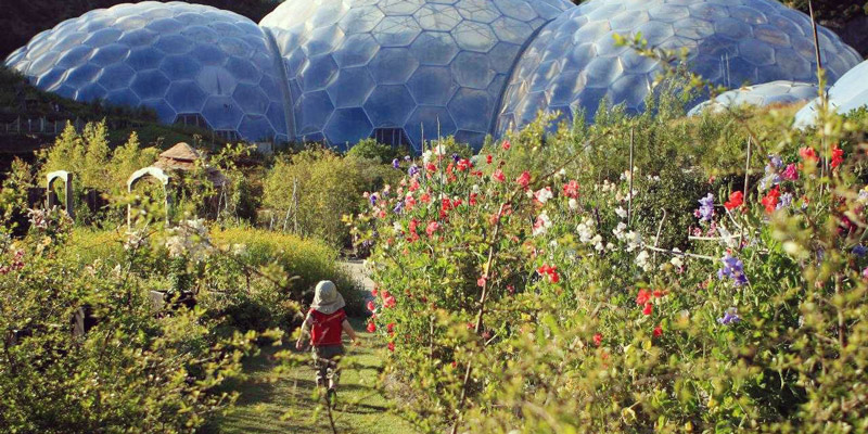 little-boy-running-in-garden-at-eden-project-cornwall