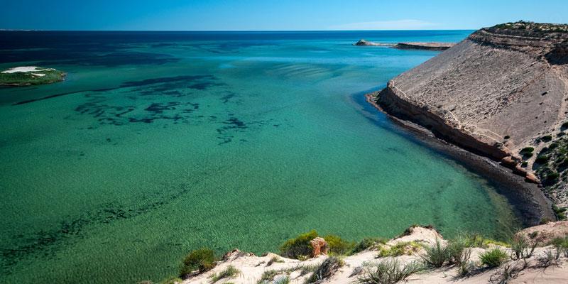 shark-bay-western-australia