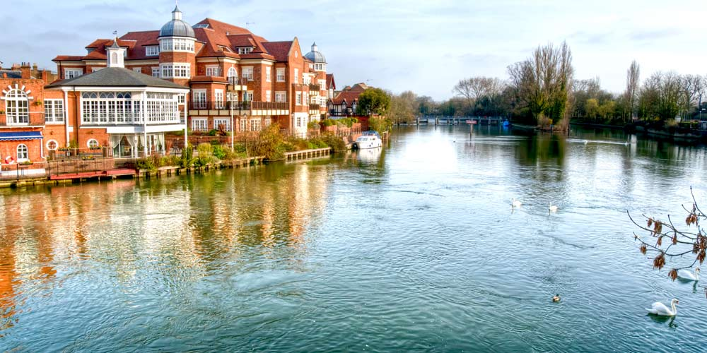 River Thames Windsor with swans