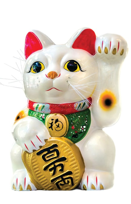 Lucky cat doll 72 hours in manhattan