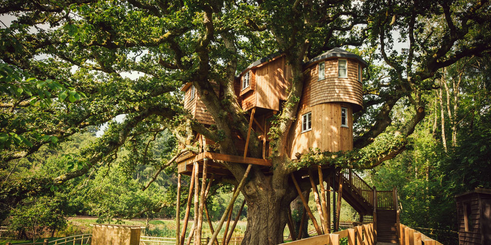 Quirky places -In the trees – Treetops Treehouse, Devon