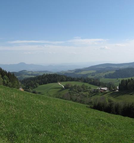 Countryside Slovenia