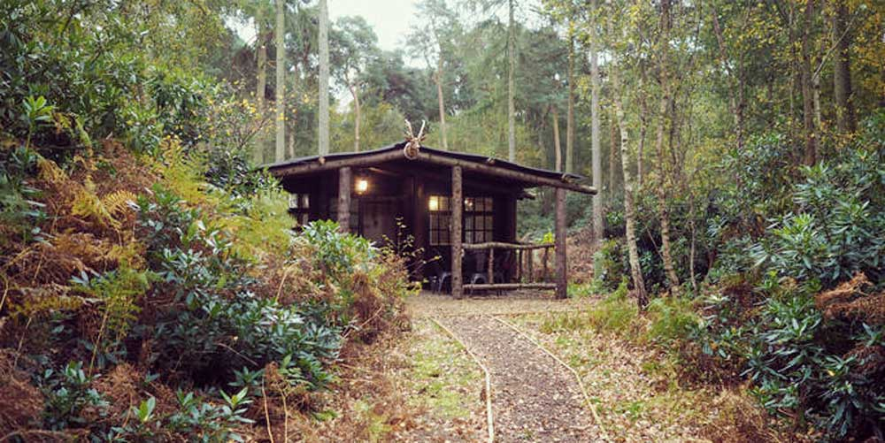 Quirky places - Woodland wonder – North Star Club Cabin, Whitby
