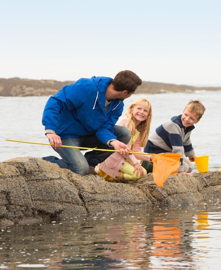 rock pooling family Father's Day