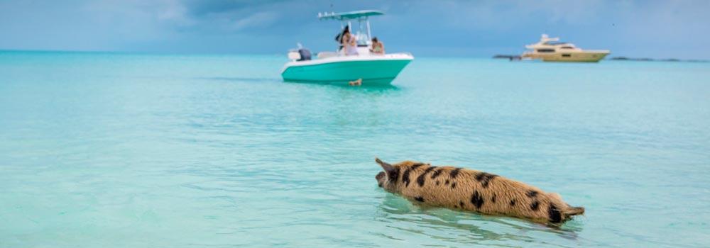 Family Holidays to Bahamas