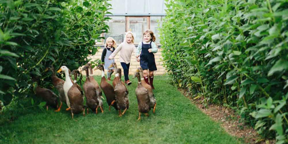 Top UK family hotels for late summer breaks with kids