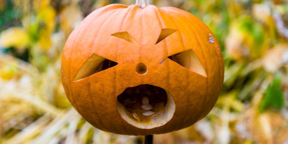 Halloween family activities, October half term, Halloween 2021v